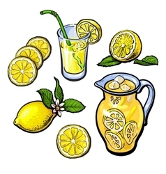 lemonade with lemon in a transparent jug vector image vector image