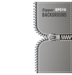 Silver zipper background vector image vector image