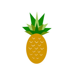 Summer pineapple vector