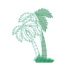 tropical palms design vector image vector image