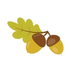Acorns with green leaf vector