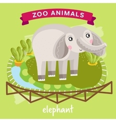 Zoo animal elephant vector