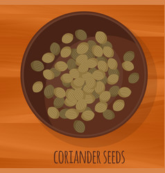 Coriander seeds flat design icon vector