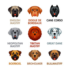 cute dog icons set iii vector image