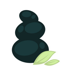 Dark olive fruit pile with green leaves isolated vector