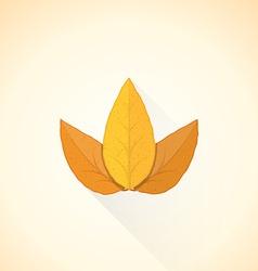Flat threesome tobacco leaf icon vector