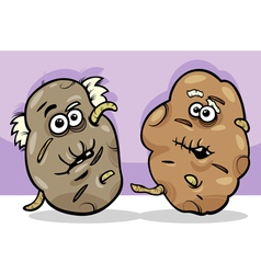 old potatoes cartoon vector image