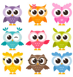 Set of colorful funny owls isolated on white vector