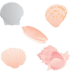 Pastel sea shells vector