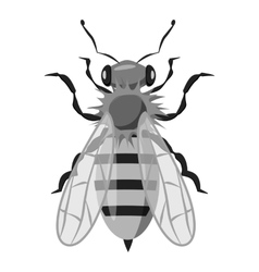 Insects bee icon gray monochrome style vector