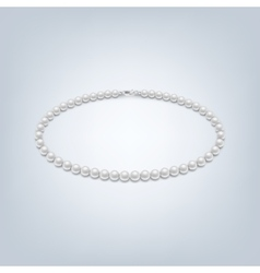 Isolated pearl necklace vector