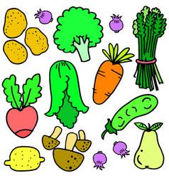 doodle of fresh vegetables set vector image