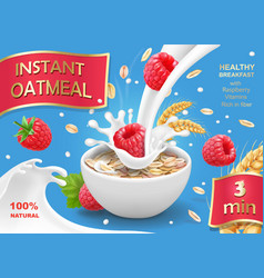 Instant oatmeals oat flakes with raspberry vector