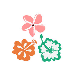 Summer tropical flowers vector