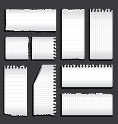 Torn notebook vector