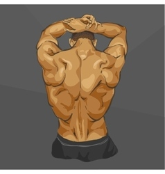 Muscular man body vector