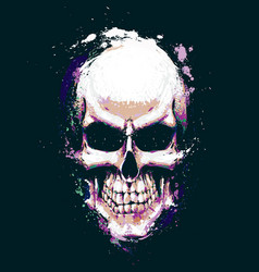 skull artistic splatter purple n green vector image