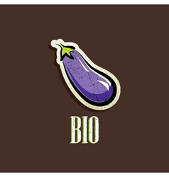 Vintage with an eggplant vector