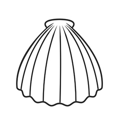 Scallop seashell vector