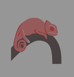 in flat style of chameleon vector image
