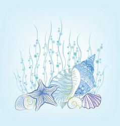 Marine life background seashell seastar summer vector
