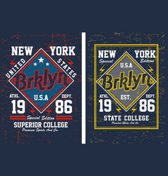 vintage brooklyn new york vector image vector image