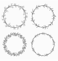 wreaths branches laurels with herbs plants and vector image