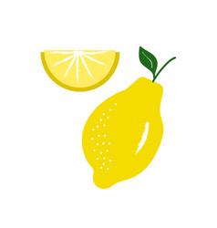 summer lemon vector image