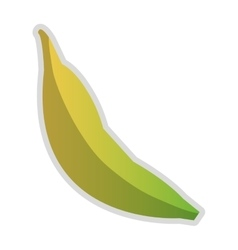 Whole banana icon vector