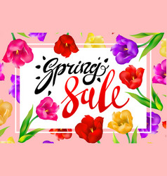 Spring sale banner colotful tulips flowers pink vector