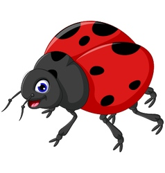 Cute ladybug cartoon for you design vector