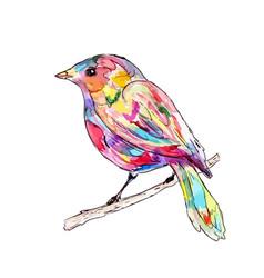 a bird on a branch watercolor vector image