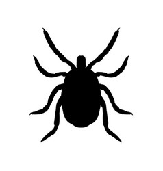 silhouette of mite top view vector image
