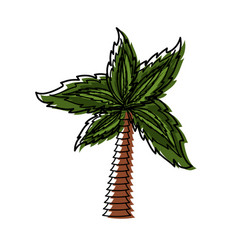 palm tree symbol vector image vector image