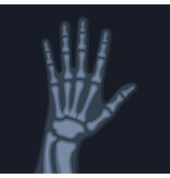 X rays style human hand vector