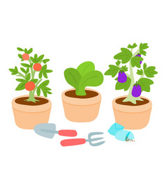 Cute and colorful vegetable pot vector