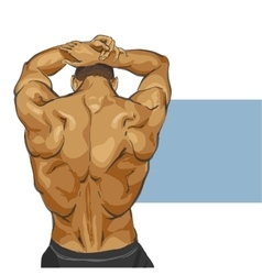 Muscular man body vector image