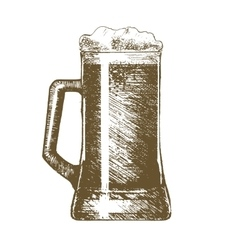 Beer mug hand draw sketch vector