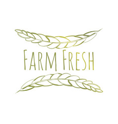 farm fresh label vector image vector image
