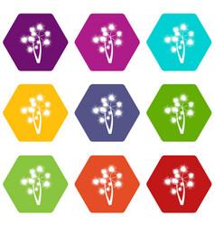 Prickly palm icon set color hexahedron vector