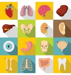 Human organs icons set flat style vector