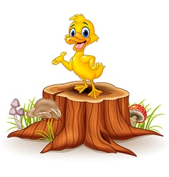 Cartoon funny duck presenting on tree stump vector