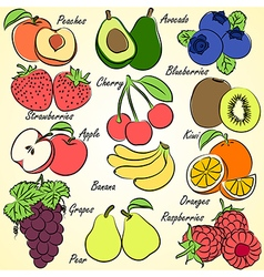 fruits set2 vector image