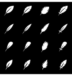 white feather icon set vector image vector image