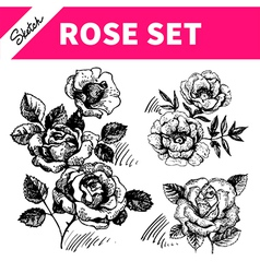 Sketch floral set vector