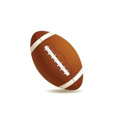 balls football vector image