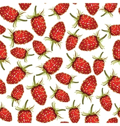 strawberry wild pattern vector image