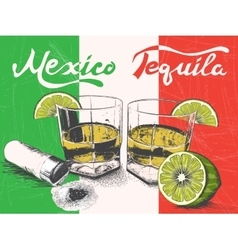 Tequila in glasses on mexican flag background vector