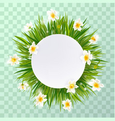 round natural frame with grass and flowers vector image