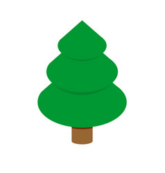 Christmas tree isometric style fir geometry for vector